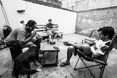 (lndrg88) Tags: friends white black amigos byn backyard nikon friendship wb tokina patio mates tarde porro 1116 d7100