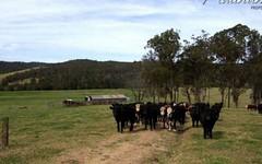 347 Nerrigundah Mountain Road-Stockyard Farm, Bodalla NSW