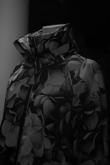 MONCLER (Okera) Tags: 50mm summilux 2015   mmonochrom prond4