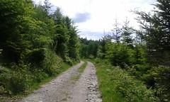 road in forest (jakubfilo) Tags: trip mountains bike cycling day may sunny stare slovensko slovakia dolina spania velka hory eslovaquia dolny donovaly vrchy fatra turecka jelenec kordiky kremicke starohorske