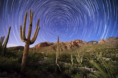 Star Trails over the Catalinas (www.arayphoto.com) Tags: santa arizona cactus sky mountains night forest stars desert tucson saguaro coronado startrails fingerrock catalinas nationsl