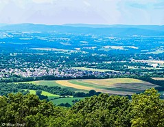 Frederick Landscape (awscas) Tags: green nikon d3300 landscape maryland home view