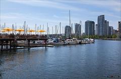Under The Umbrella (Clayton Perry Photoworks) Tags: summer canada yellow skyline vancouver umbrella boat bc falsecreek explorebc explorecanada dailyhivevan