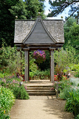 2016.07.014 Abbotsbury (78) (Kotatsu Neko 808) Tags: uk england gardens dorset subtropical abbotsbury abbotsburysubtropicalgardens