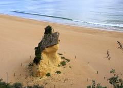 Albufeira Beach (Hans van der Boom) Tags: europe portugal algarve vacation holiday albufeira beach rock lookingdown pt