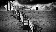 The Steps (Alfred Grupstra Photography) Tags: blackandwhite bw clouds bench nederland nl steppes flevoland lelystad