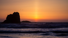 Sunset at Bandon (San Francisco Gal) Tags: coquillepoint bandon oregon stacks pacificocean sea wave sunset bird silhouette tranquility pacificnorthwest ocean bluehour seabird ngc