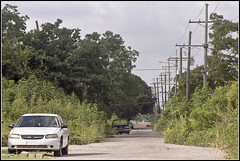 New Orleans 2016 - 23 (derekwatt) Tags: travel summer film analog 35mm nikon exploring neworleans lousiana analogphotography 35mmphotography nikonf4 c41 filmphotography unicolor
