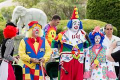 showmens rest. august 2016 (timp37) Tags: showmens rest august 2016 illinois summer woodlawn cemetary forest park clown clowns kiwi