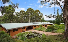 736 New Buildings Road, Wyndham NSW