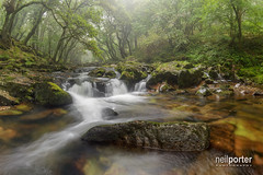 The mystical river (www.neilporterphotography.com) Tags: river dartmoor mist waterfall