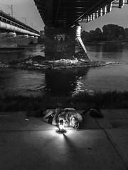 Ola? (gregor.zukowski) Tags: warsaw warszawa street streetphoto streetphotography peopleinthecity candid urban bridge bw blackandwhite fujifilm river