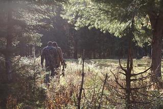 Quebec Elk & Red Stag Hunt 85