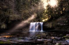 ButteCreekFalls-3 (Bill Young) Tags: fall oregon creek forest river waterfall buttecreek