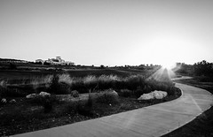 Elea Golf series _3/5 Sunrise (michael_kofteros) Tags: trees urban blackandwhite bw game nature monochrome grass sunrise lumix path lawn cyprus balls peaceful greens golfcourse clubs fairway sunrays buggy bushes clubhouse tees golfclub elea whiteblack morningview golfballs lx5 buggypath hillsite michaelkofteros eleagolf elearestaurent