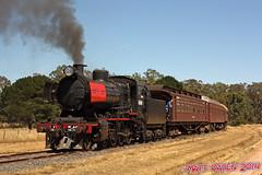 Clearing (MattOatenVR) Tags: railroad train foundry town smoke victorian railway australia steam oil locomotive vulcan burner 1950 castlemaine vr maldon bushland vgr goldfields muckleford j549 clerestorycoachaustralianstock