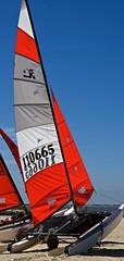 Red Sail & Blue Sky (57rroberts) Tags: winter beach nature beauty sailboat outdoors boat frozen nikon boating delaware championships nikkor hobie lewes boatraces lewesbeach 16 57rroberts hobie16championships