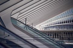 Lige Guillemins (cerealbawx) Tags: railroad station architecture train concrete 50mm belgium belgique belgie gare escalator bahnhof galaxy scifi speedmaster liege luik beton belgien rolltreppe guardians f095 treinstation lttich zement 095 mitakon escalateur