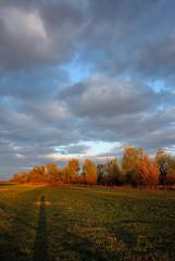 spring cloud (enzzo_) Tags: sky cloud tree nature field sunshine clouds landscape nikon fine bluesky ukraine nikkor landschaft vadim springtime beldy nikon1 nikkor10mmf28 nikonone landscapesdreams theacademytreealley cloudsstormssunsetssunrises nikon1v1 nikonv1 landscapesworld infinitexposure vadimbeldy