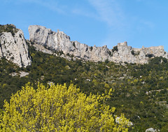 Chateau de Peyrepertuse (Niall Corbet) Tags: france lang roussillon aude peyrepertuse chateau castle fort fortress cliff mountain