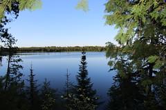 2016 Camping Trip (niczak) Tags: kreidberg family camping northwoods minnesota lake forest trees