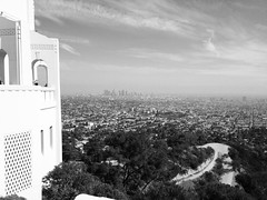 (suitoffexpo) Tags: urban street natural sunshine 2014 summer california ca smog fog downtownla downtown view losangeles hollywood la griffithobservatory