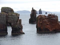 Stacks and Natural Arch, Braewick, Shetland, 21 July 2016 (AndrewDixon2812) Tags: stack natural arch drongs braewick hillswick northmavine eshaness shetland bay headland peninsula cliffs