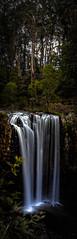Trentham Falls (Nick Pemberton) Tags: trees winter color colour texture water beauty forest river dark waterfall bush slow australia victoria dirt shutter trentham