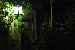 (Renia(69)) Tags: night dark green black light trees window urban leaves athens romance curtain walk photography coloured nikon nikond60 autumn shadow memory sixtynine love nophotoshop nature life moments