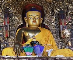 Sakya Monastery 26 (joeng) Tags: tibet china sakya temple building sakyamonastery landscape buddha monastery people places flower
