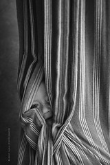 Child wrapped up in a hammock (Robert Lang Photography) Tags: childwrappedupinahammock childwrapshimselfwithahammockwhilepeakingoutofthehole child wraps himself with hammock while peaking out hole blackandwhite boy canvas childish colour hide hiding imagination play relaxing son wrappedup robertlangphotography robertlang robertlangportlincoln robertlangaustralia wwwrobertlangcomau