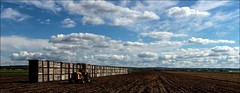 Holland Marsh (RichardKz) Tags: hollandmarsh ontario farm tractor agriculture stitchedpanorama panorama stitched