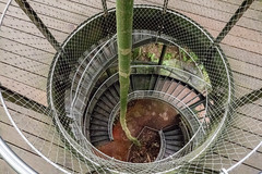 spiral stairs (ToDoe) Tags: wendeltreppe treppe stairs circularstaircase windingstaircase circularstairs corkscrew stairs corkscrewstairs regenwaldhaus