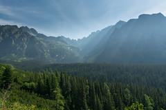 Jedno z ostatnich spojrze na Tatry (czargor) Tags: outdoor inthemountain mountians landscape nature tatry mountaint igerspoland