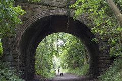 GreenArch (LucyKGraham) Tags: greenery arch archway bridge veg vegetation leaves tinder road yorkshire countryside