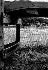 canoe shade (-gregg-) Tags: bw nature field fence canoe shade