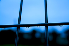 FenceDroplet (tiki.thing) Tags: fence rain waterdroplet blue photoshop water raindrop bokeh 7daysofshooting week52 shootanythingsaturday