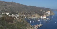 Avalon (cjacobs53) Tags: ocean california vacation beach water island coast catalina jacobs avalon losangelescounty jacobsusa