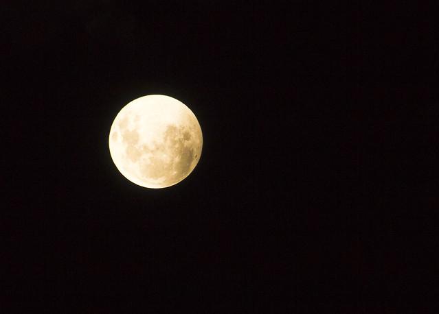 Luna Eclipse (04.04.2015) 16-7768