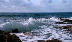 IMG_5495 (PicNic Cards) Tags: ocean waves caves palmtrees caribbean caymanbrac