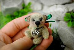 Tobi (Zhanna Zolotina) Tags: bear miniature teddy handmade ooak dollhouse altair toyzz