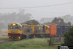 16 January 2015 TR08 TR04 Bridgewater (RailWA) Tags: tasmania bridgewater tasrail railwa tr04 tr08 philmelling