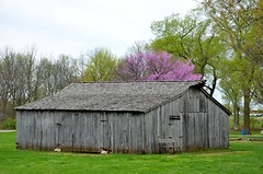 Gray-Campbell Farmstead (Adventurer Dustin Holmes) Tags: barn barns missouri ozarks springfieldmissouri greenecounty springfieldmo 2015 woodbarn nathanaelgreenepark woodenbarn closememorialpark graycampbellfarmstead