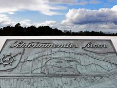 Schwimmendes Moor (niedersachsenfoto) Tags: jadebusen wesermarsch sehestedt nationalparkwattenmeer niedersachsenfoto schwimmendesmoor