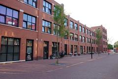DSCF1299.jpg (amsfrank) Tags: amsterdam oost people candid summer sunshine
