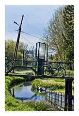 hortillonnages, (11) (Marie Hacene) Tags: amiens hortillonnages reflets vlo bicyclette bicycle