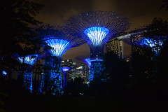 Supertrees, Gardens by the Bay, Singapore (heatherbain2) Tags: supertrees singapore gardensbythebay lights blue travel nikon asia skyline night cityskyline city marinabayhotel