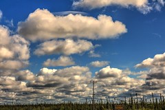 Big Sky in Fort Severn (Cindy's Here) Tags: trees ontario canada clouds canon makesmehappy bigsky 116 96 beautifulday fortsevern sc716