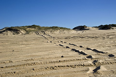 9 Mile Beach (phillipdumoulin) Tags: australia nsw belmont newcastle lakemacquarie water sand ocean sea vegetation bitou bitoubush regeneration wave 4wd sandmining
