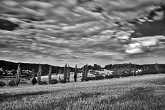 Flow of time (Petr Horak) Tags: exterior outdoor nature meadow photography landscape tree sky clouds cumulus novknn stedoeskkraj czechia cze